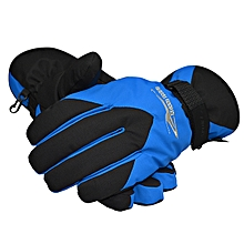 Women Outdoor Waterproof Windproof Warm Ski Gloves--Gray Blue Red