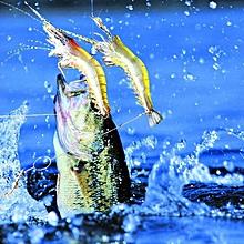 2pc fishing tackle soft bait light lead fishing artificial bait jig wobbler