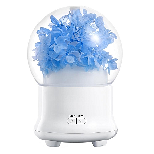 Buy louis will 100ml essential oil diffuserpreserved fresh flower 100ml essential oil diffuserpreserved fresh flower ultrasonic aromatherapy diffusers with 7 changing color led mightylinksfo