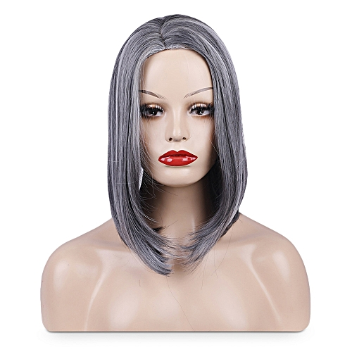 Generic Centre Parting Straight Highlight Heat Resistance Wig Women  Synthetic Hair-GRAY e743b448fe