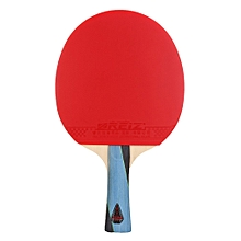 REIZ Short Or Long Handle Table Tennis Racket 4 Stars Ping Pong Paddle