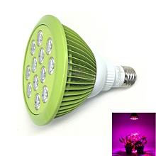1PCS E27 24W Ac 85~265V 12 - Led Plant Grow Light - Mint Green - Green