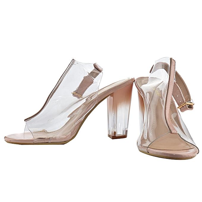 c7fb41c2e95 Clear Chunky Heels in Nude Colour