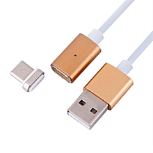 Aluminum Alloy USB 3.1 Type-C Magnetic Data Cable Line With Plug (Gold)