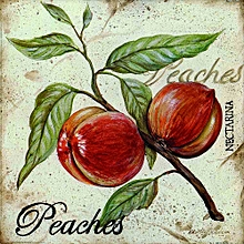 Canvas Print Leaves Wall Picture 40X40cm Rolled -  Peaches