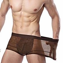 Men's Mesh Sheer Underwear Boxer Briefs Shorts Bulge Pouch Underpants (Coffee)