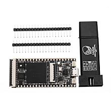 Lichee Tang 64Mbit SDRAM RISC-V Development Board Mini PC + FT2232D JTAG USB RV Debugger