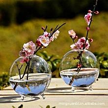 Round Water Planting Flower Vase Office Decor