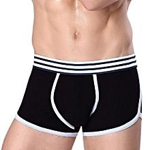 2017 New Cotton Men's Underwear Flat Sports Underwear Waist Briefs