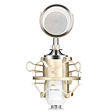 LEIHAO BM - 8000 Professional Sound Studio Recording Condenser Microphone with 3.5mm Plug Stand Holder WHITE