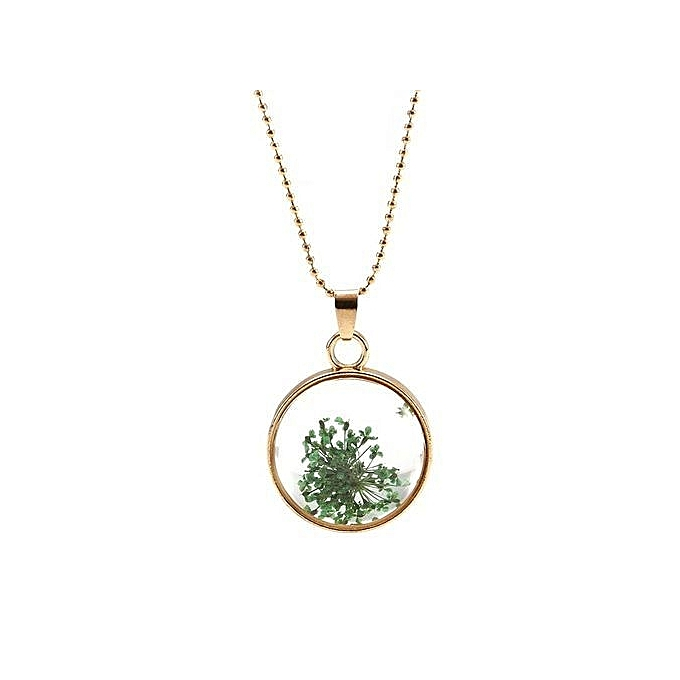 Buy Fashion Beautiful Necklace Plant Specimen Box Circular Glass