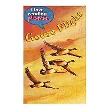 I Love Reading Phonics - Goose Flight