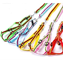 5 Pack Gold Colored Dog Leash Random   (size (l * W ): L: 2.0 * 150cm)