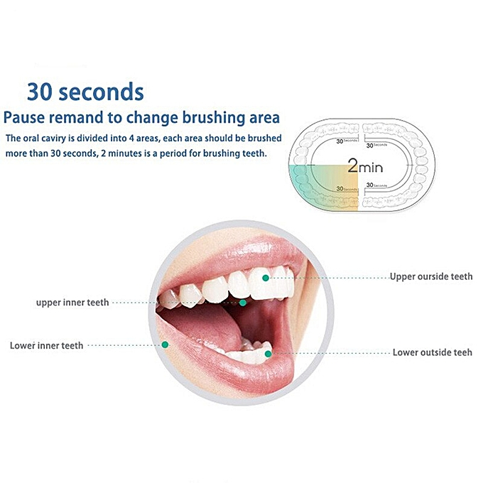 U1 Sonic Electric Toothbrush Adult Timer Brush USB Charge Rechargeable  Tooth Brushes with 4/8 pcs Replacement Heads(4 heads pink)