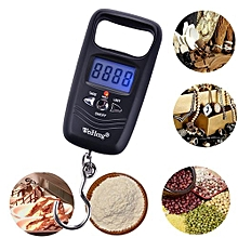 Technologg Electronic Scale  Portable 50KG Double Precision Digital Electronic Fishing Hook Pocket Scale -black