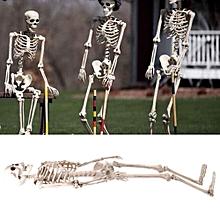 Neuf taille grandeur nature modèle anatomique du squelette humain 1.6m