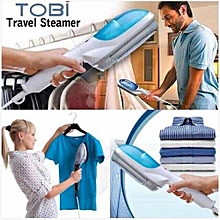 Portable steam iron and brusher