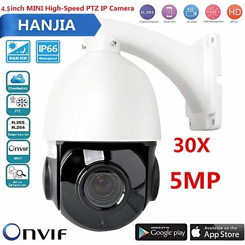 Mini 4 5 Inch 1080P High Speed Dome PTZ IP Camera Onvif 30X Zoom Security  CCTV 50m IR Night Vision Free CMS APP Control4 5 Inch 5 0MP(2592x1944))  High