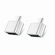 TOCHIC USB to Micro USB Male Adapter for USB Stick / Phone / Tablet etc - 2 PCS SILVER