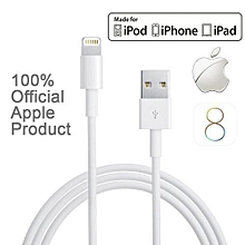 Iphone Charger USB Data Cable iPhone 5 5S 5C 6 6 Plus iPad and iPod (Non Retail Packaged)