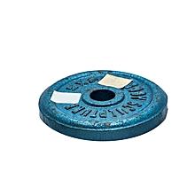 BW-2-B - Weight Cast Iron Plate- 2KG- Blue