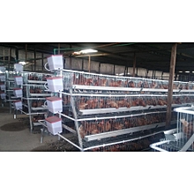 96 Chickens Battery Cage with Automatic Water System