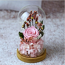 Glass Covered Small Pink Rose Preserved