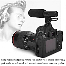 Professional Stereo Mini Microphone For Video Recording Universal For Digital Video Camera