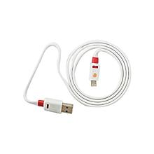 iPad Flat Cable - 1M - White