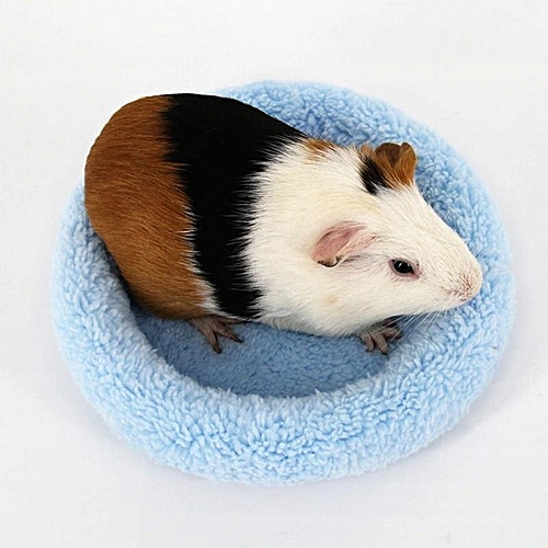 Marvelous Hamster Mat Bed Cute House Small Animal Pet Rabbit Rat Squirrel Guinea Pig Winter Warm House Cushion Nest Hamster Accessory Interior Design Ideas Oteneahmetsinanyavuzinfo