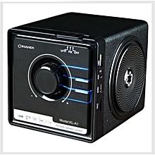 Desktop FM Speaker