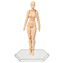 2.0 Body Kun Doll PVC Body-Chan DX SET Action Figure Model For SHF [Skin Color / Female]