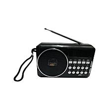 Rechargable Digital Fm Radio with usb and memory slot -Black