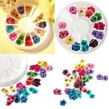 Dried Dry Flower For Nail Art Decorations UV Acrylic Wheel Pack
