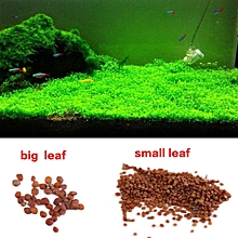 Aquarium Fish Tank Water Plants Grass Seed Decoration Landscape Ornament (Big Leaf)