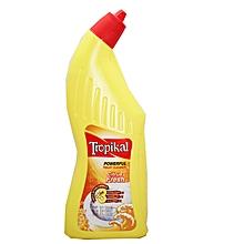 Toilet Cleaner Citrus Fresh 500ml.