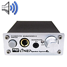 A907 Professional Two-channel Microphone Amplifier Dual Microphone Reverb