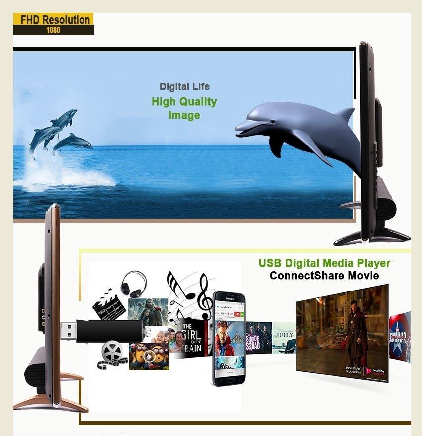 """DigiSmart 19"""" LED TV Digital TV black 19 2"""