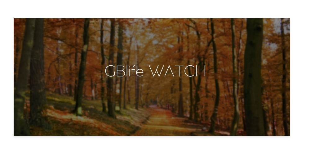 GBlife MF - 001 Men Quartz Wooden Watch Simple Dial Male Wood Wristwatch