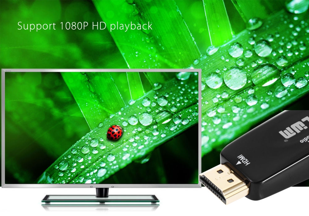 LWM HDMI Male to VGA Female with Audio Converter