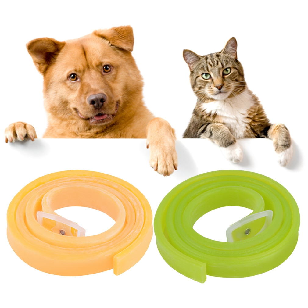 Best Tick Protection For Cats