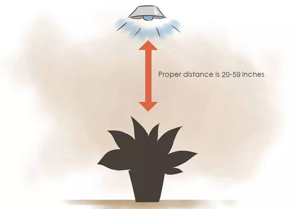 1200W ( True 340W ) LED Plant Grow Light Full Spectrum Lamp for Hydroponics Indoor Seedling