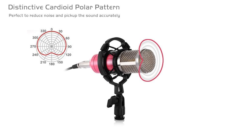 BM - 800 Professional Condenser Microphone for Studio Broadcasting Recording