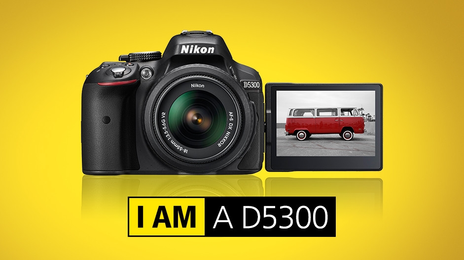 Image result for nikon D5300
