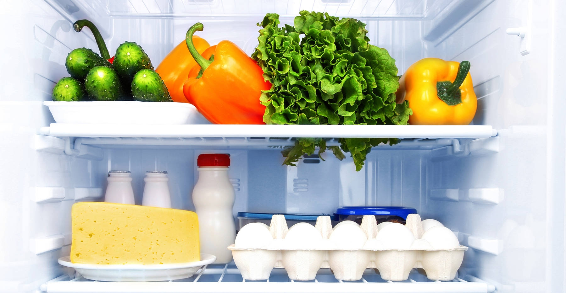 Image result for refrigerating vegetables in a mini fridge