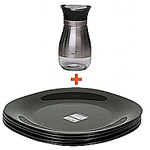 Luminarc set of 6 pieces Dinner plates with a glass salt shaker with stainless steel top.