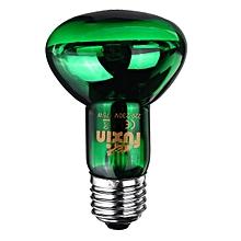 75W Green Night Amphibian Snake Lamp Heat Reptile Bulb Light