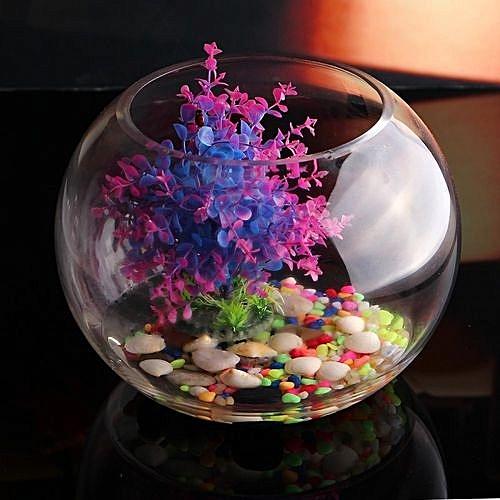 Buy Universal 20cm Round Clear Glass Vase Fish Tank Ball Bowl Flower