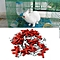 30pcs Rabbit Nipple Water Drinker Waterer Poultry Feeder Bunny Rodent Mouse Red & Silver