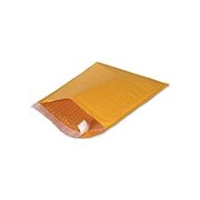 Paded Envelop - 220 x 330 F/3